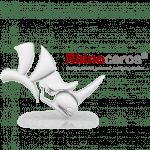 McNeel Rhinoceros